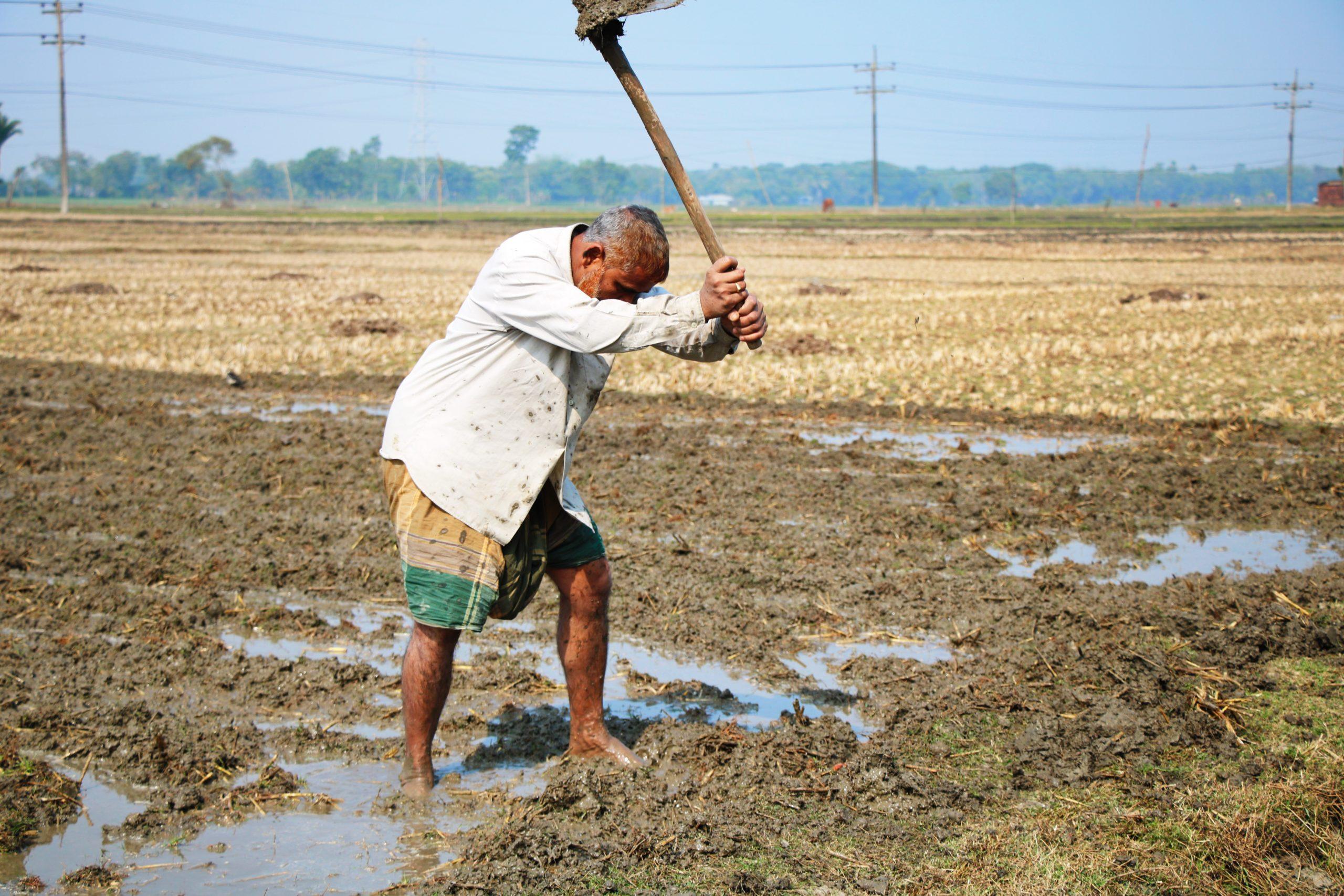 elderly man working with a hoe in muddy field